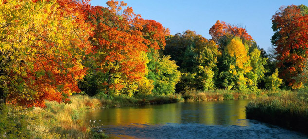 Autumn River